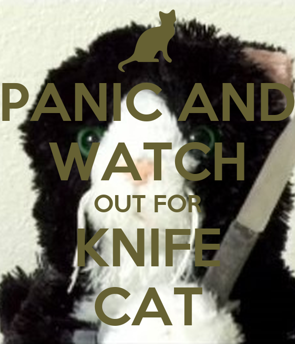 PANIC AND WATCH OUT FOR KNIFE CAT