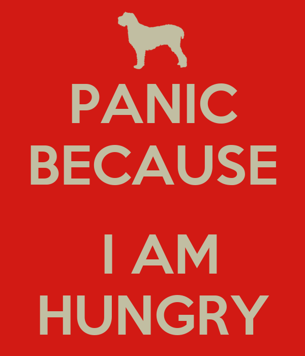 PANIC BECAUSE   I AM HUNGRY