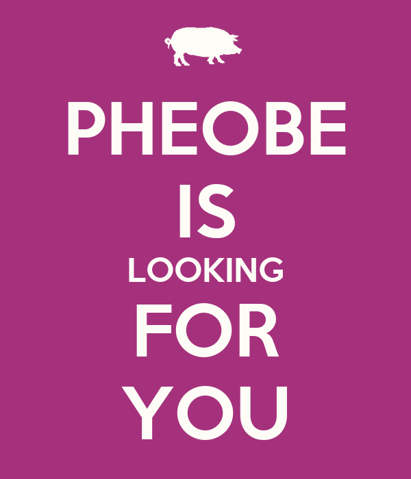 PHEOBE IS LOOKING FOR YOU