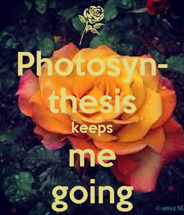 Photosyn- thesis keeps me going