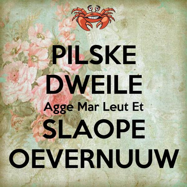 PILSKE DWEILE Agge Mar Leut Et SLAOPE OEVERNUUW