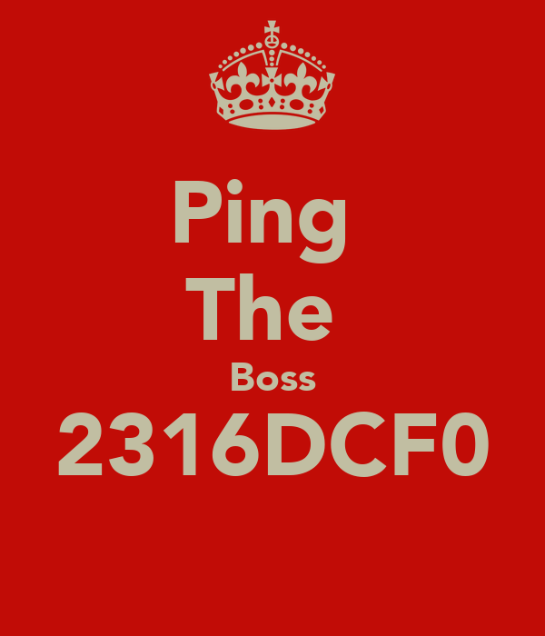 Ping  The  Boss 2316DCF0