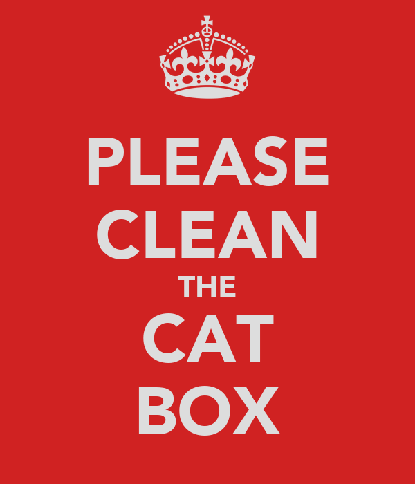 PLEASE CLEAN THE CAT BOX