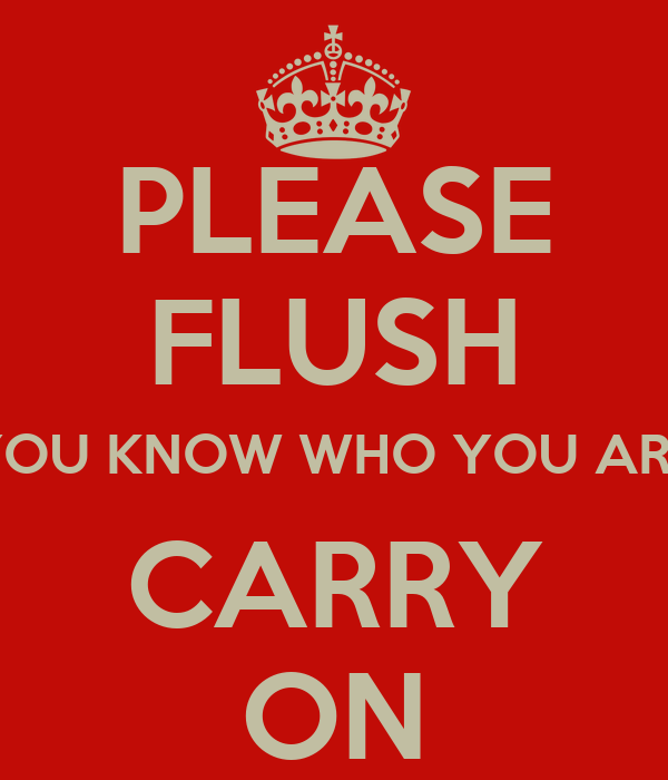 PLEASE FLUSH (YOU KNOW WHO YOU ARE) CARRY ON