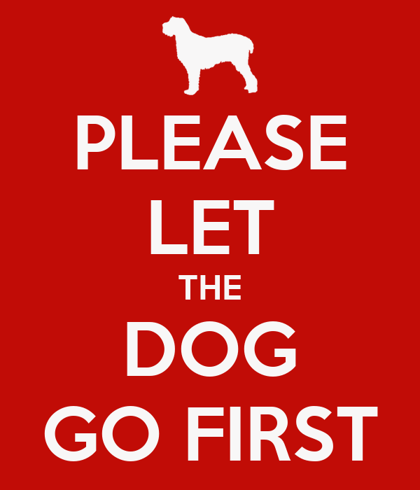 PLEASE LET THE DOG GO FIRST