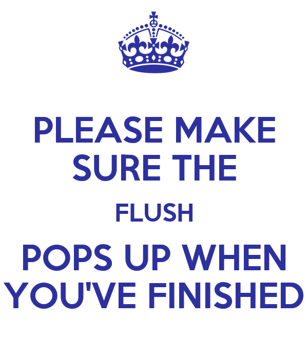 PLEASE MAKE SURE THE FLUSH POPS UP WHEN YOU'VE FINISHED
