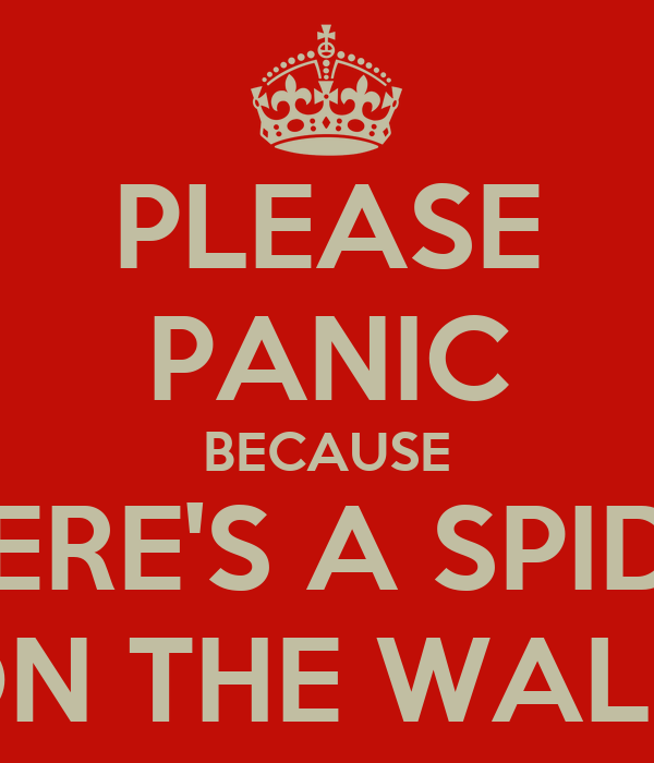 PLEASE PANIC BECAUSE THERE'S A SPIDER ON THE WALL!