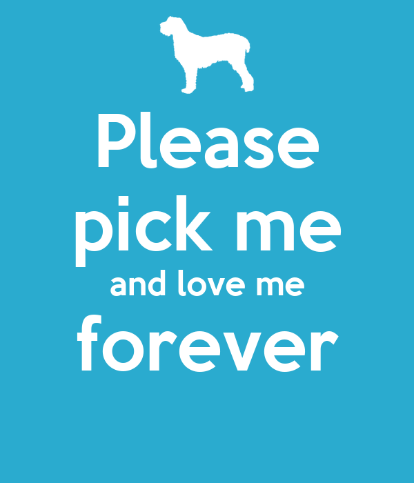 Please pick me and love me forever poster brandy keep for Pick me choose me love me shirt
