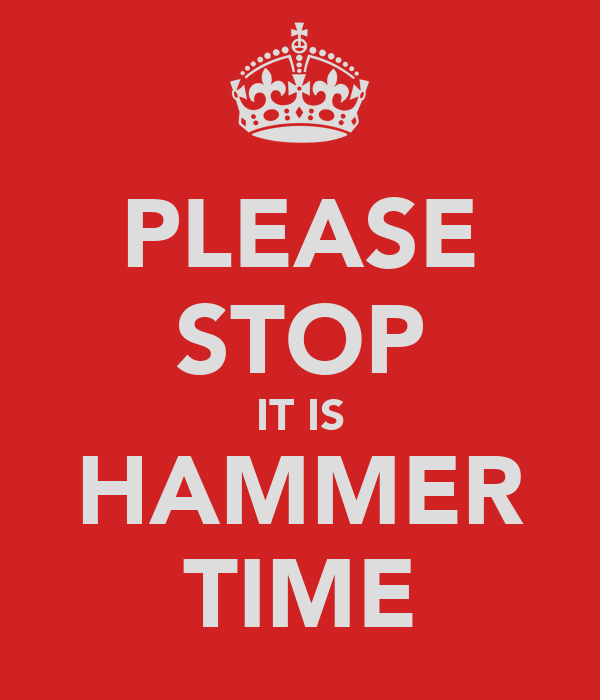 PLEASE STOP IT IS HAMMER TIME