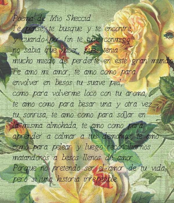Poema de Mio Sheccid Te pense, te busque y te encontre, y cuando por fin te tuve conmigo  no sabia que hacer, pues tenia  mucho miedo de perderte en este gran mundo. Te