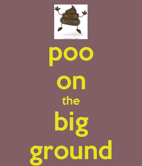 poo on the big ground