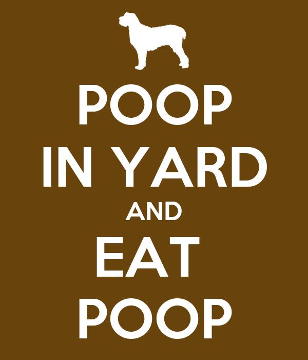 POOP IN YARD AND EAT  POOP
