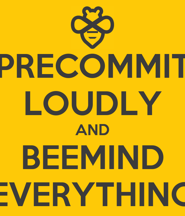 PRECOMMIT LOUDLY AND BEEMIND EVERYTHING