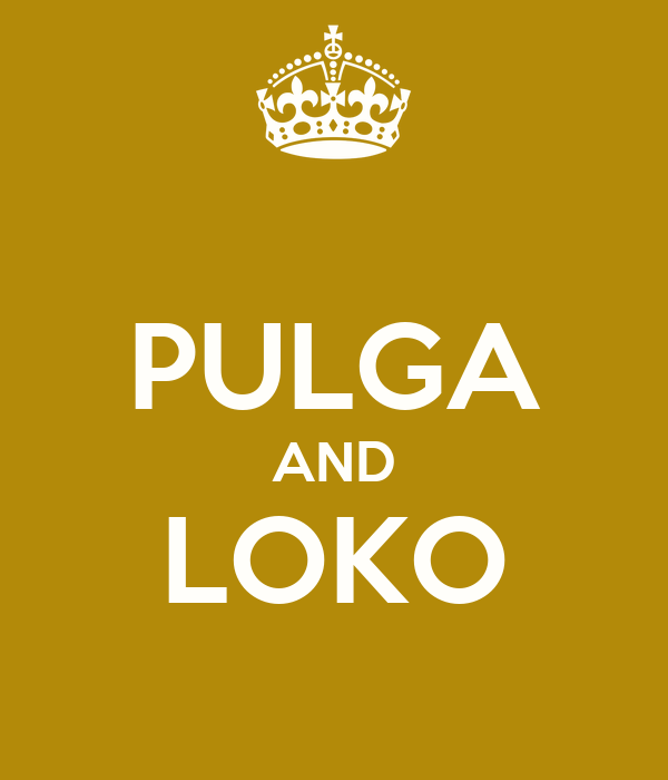 PULGA AND LOKO