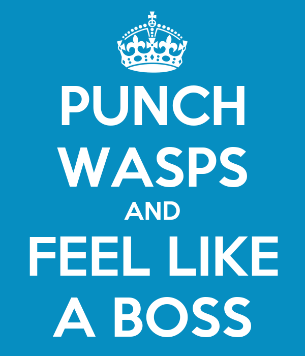 PUNCH WASPS AND FEEL LIKE A BOSS