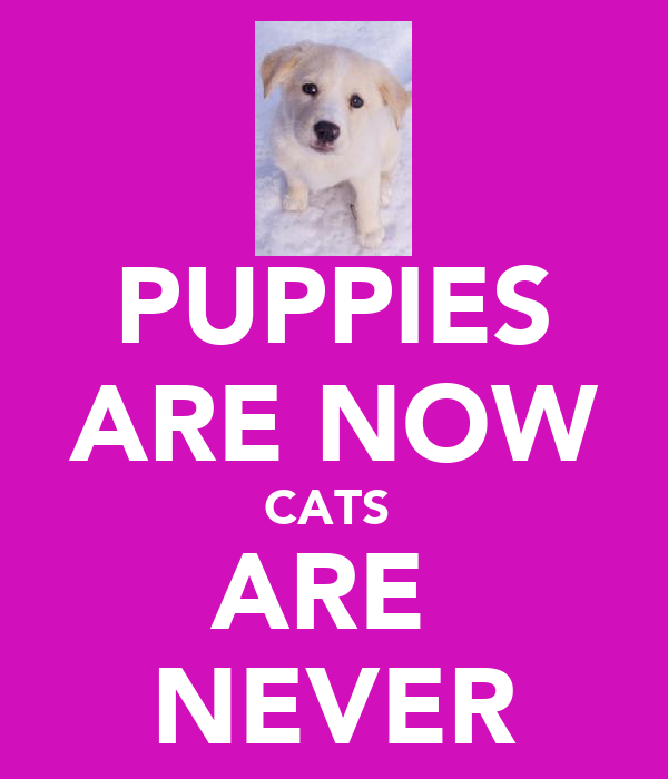 PUPPIES ARE NOW CATS  ARE  NEVER