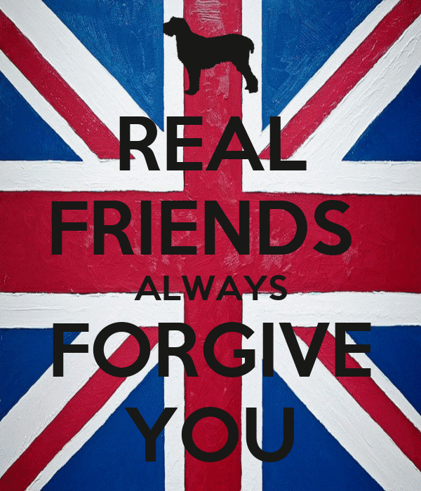 REAL FRIENDS  ALWAYS FORGIVE YOU