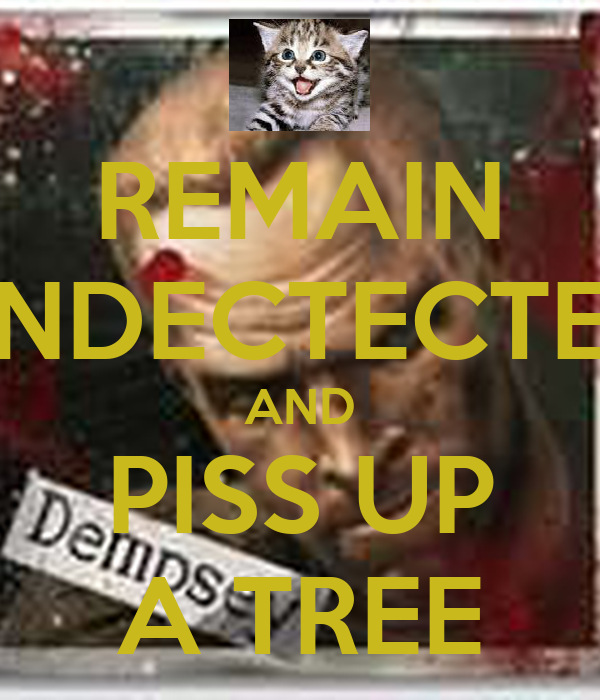 REMAIN UNDECTECTED AND PISS UP A TREE