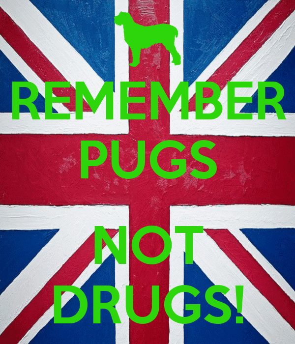 REMEMBER PUGS  NOT DRUGS!