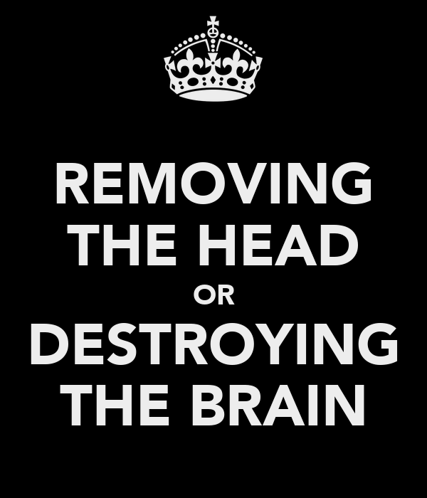 REMOVING THE HEAD OR DESTROYING THE BRAIN