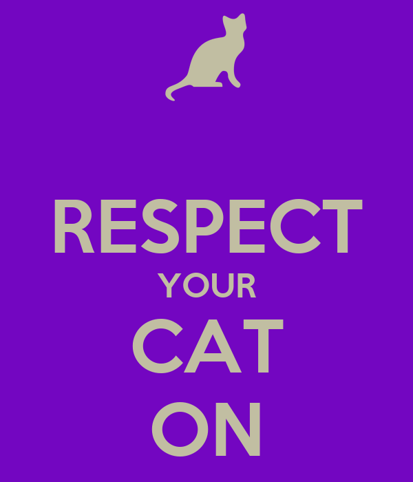 RESPECT YOUR CAT ON