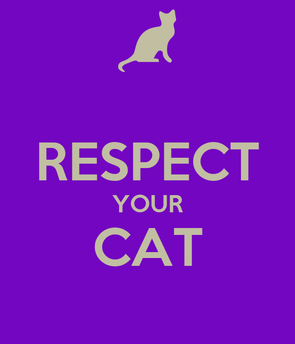 RESPECT YOUR CAT