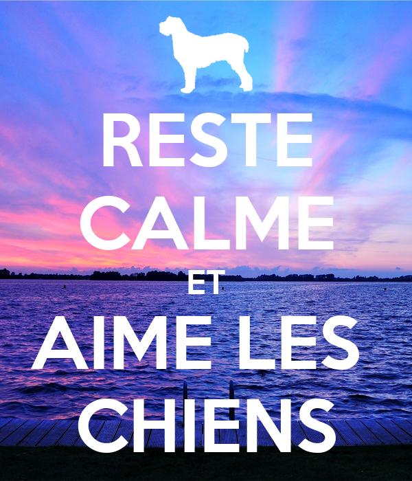 RESTE CALME ET AIME LES CHIENS Poster | Hailey | Keep Calm