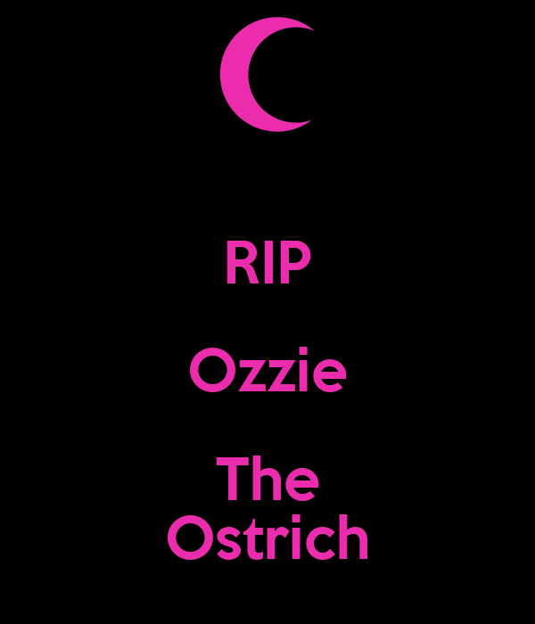 RIP Ozzie The Ostrich