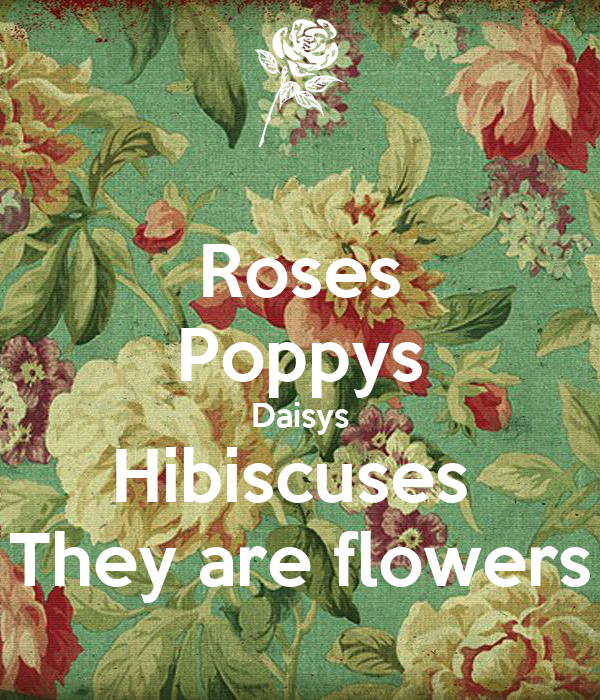 Roses Poppys Daisys Hibiscuses  They are flowers