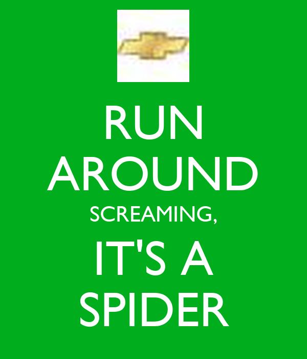 RUN AROUND SCREAMING, IT'S A SPIDER