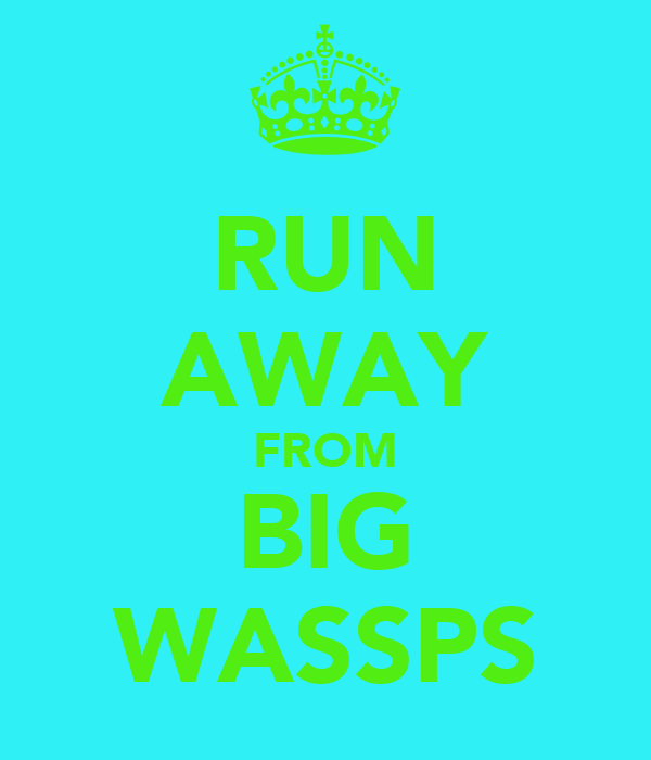 RUN AWAY FROM BIG WASSPS