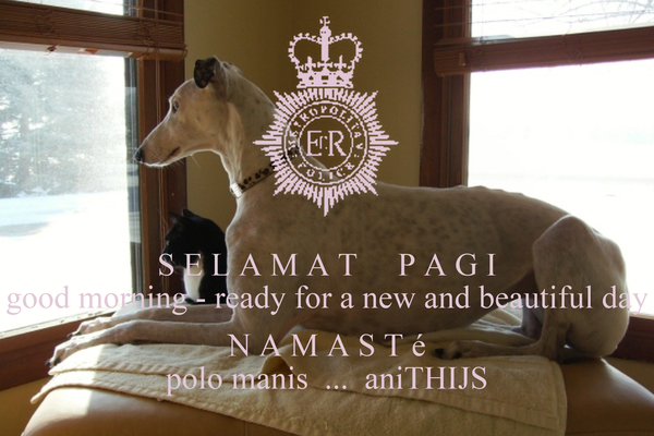 S E L A M A T     P A G I good morning - ready for a new and beautiful day  N A M A S T é polo manis  ...  aniTHIJS