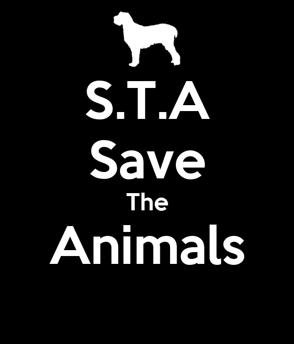S.T.A Save The Animals
