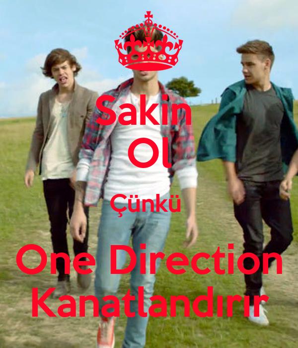 Sakin  Ol Çünkü  One Direction Kanatlandırır