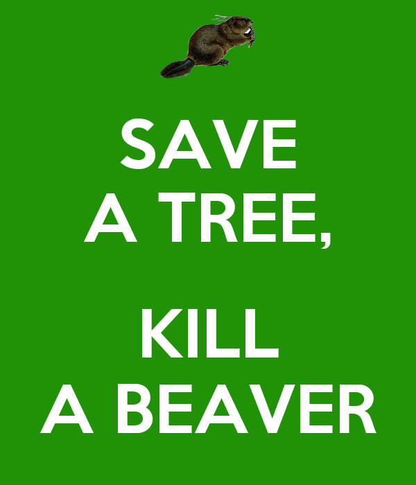 kill a tree or save life 8 ways to safely and effectively kill a tree search the site go animals and nature forestry growing trees tree identification basics arboriculture tree structure & physiology conifer species  marine life dinosaurs evolution by steve nix updated february 18, 2018.