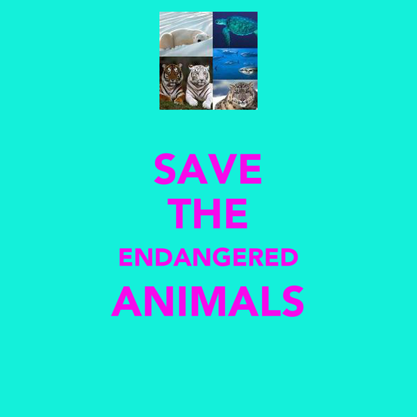 SAVE THE ENDANGERED ANIMALS