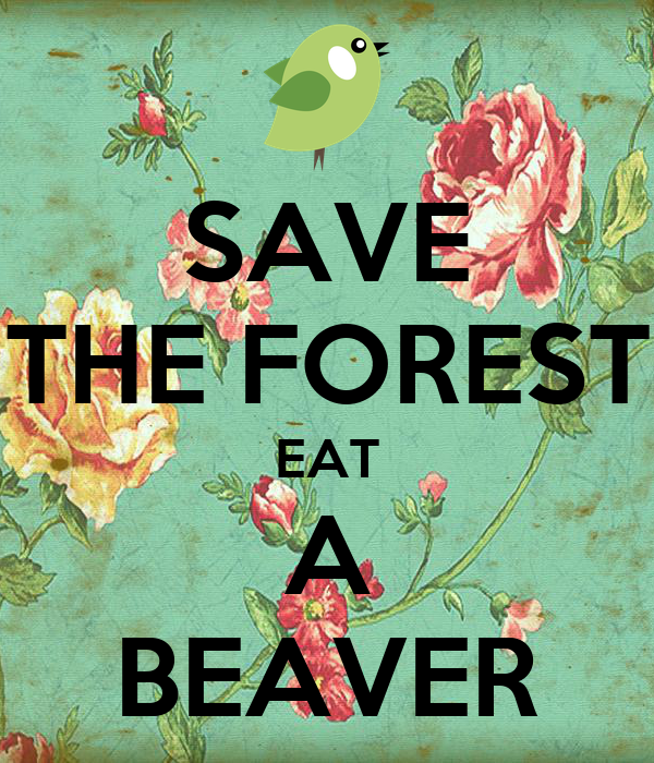 SAVE THE FOREST EAT A BEAVER