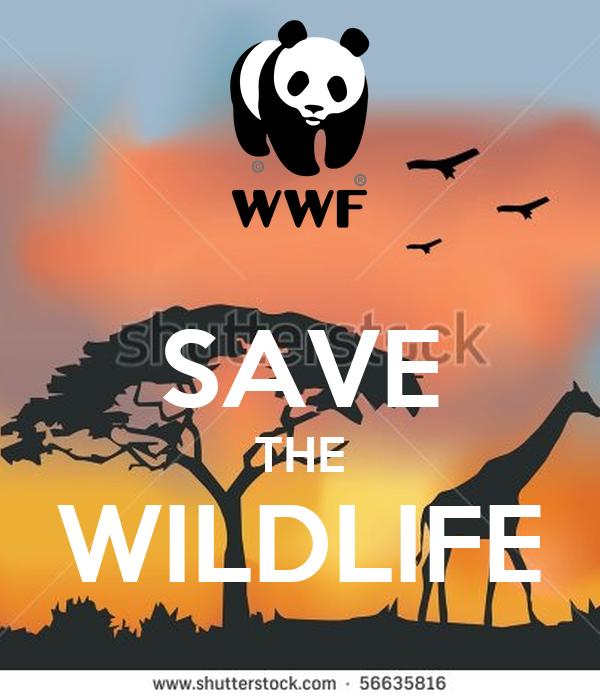 SAVE THE WILDLIFE Poster  Anna  Keep Calm-o-Matic