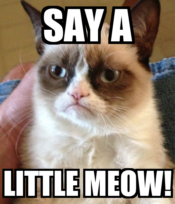 SAY A LITTLE MEOW!