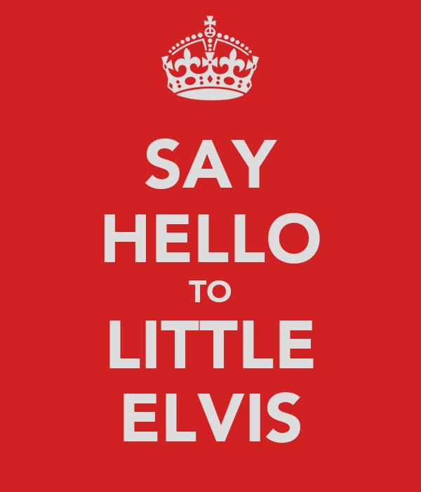 SAY HELLO TO LITTLE ELVIS