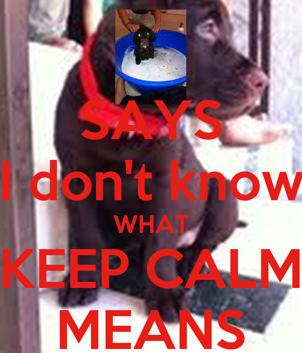 SAYS I don't know WHAT KEEP CALM MEANS