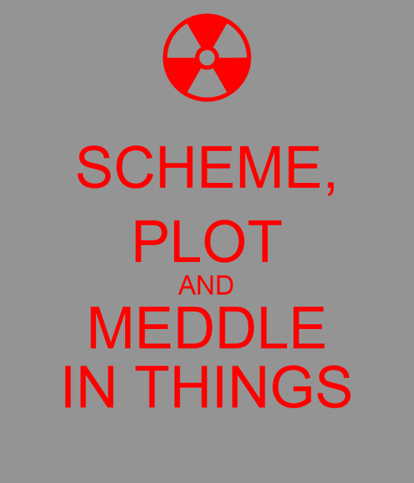 SCHEME, PLOT AND MEDDLE IN THINGS