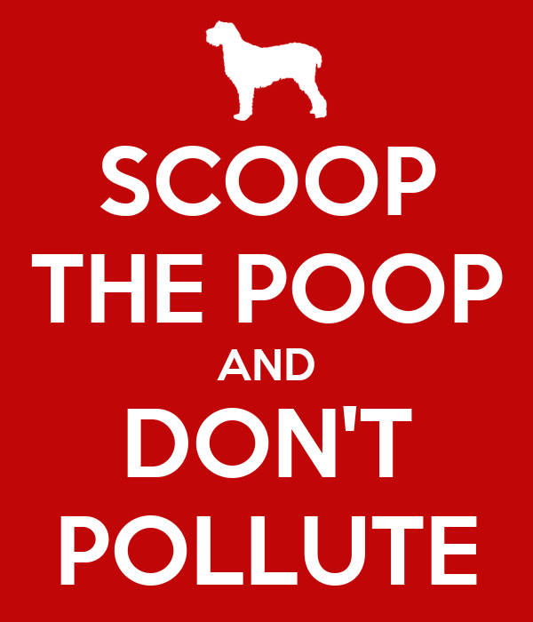 SCOOP THE POOP AND DON'T POLLUTE
