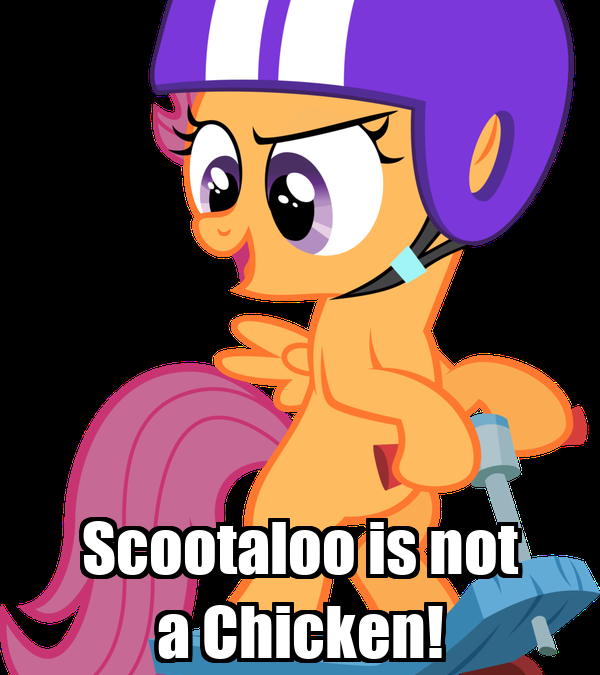 Scootaloo is not a Chicken!