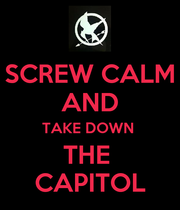 SCREW CALM AND TAKE DOWN  THE  CAPITOL