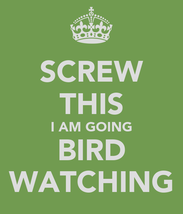 SCREW THIS I AM GOING BIRD WATCHING