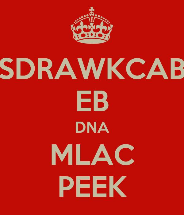SDRAWKCAB EB DNA MLAC PEEK