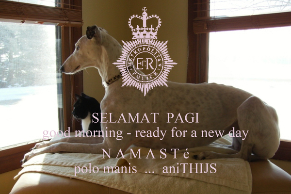 SELAMAT  PAGI good morning - ready for a new day  N A M A S T é polo manis  ...  aniTHIJS