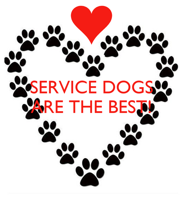 SERVICE DOGS ARE THE BEST!