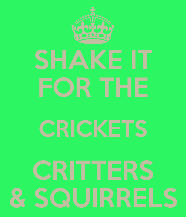 SHAKE IT FOR THE CRICKETS CRITTERS & SQUIRRELS